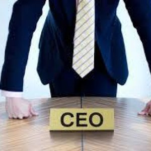 Virtual CEO as Virtual CxO