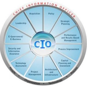Virtual CIO as Virtual CxO