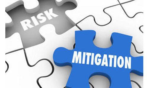 Risk Management and Mitigation